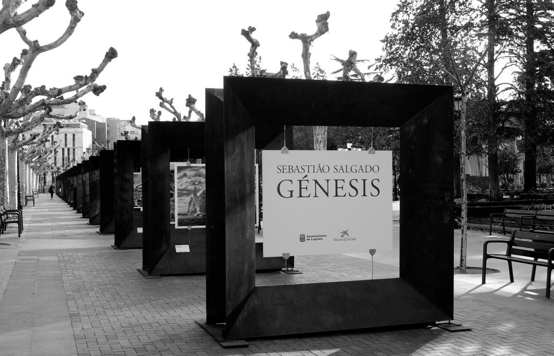 SEBASTIAO SALGADO2520112015